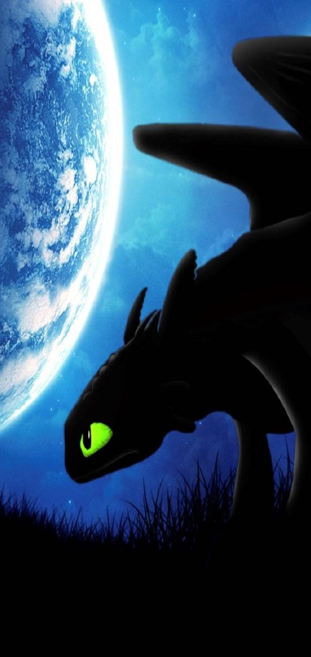 toothless_night-adda6d66-168c-4a37-8327-ac0be9349359